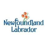 nl-logo-new