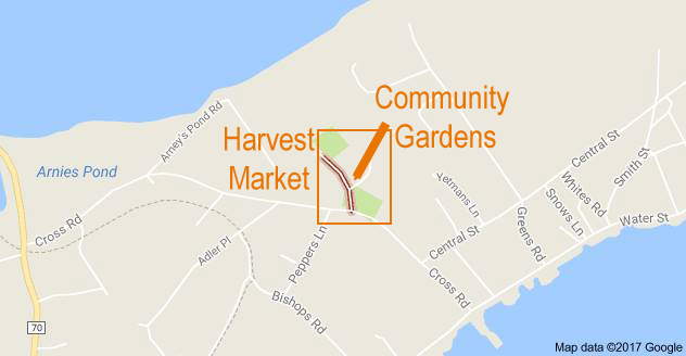 Location of the Community Gardens